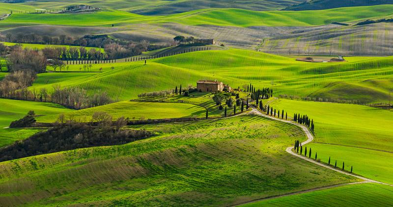 PH_Miccioni_Landscape581